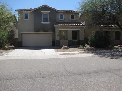 Tucson Single Family Home Active Contingent: 1667 W Blue Horizon Street