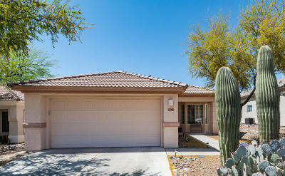 Marana Single Family Home For Sale: 5373 W Winding Desert Drive