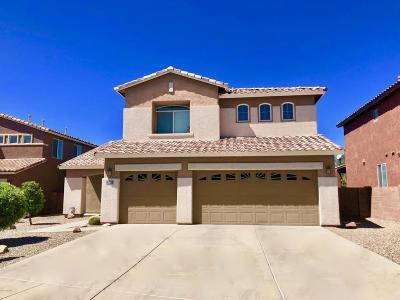 Tucson Single Family Home For Sale: 3393 N Star Valley Lane