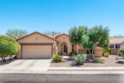 Continental Ranch Sunflower Single Family Home Active Contingent: 9384 N Sombrero Canyon Drive