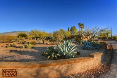 Tucson Single Family Home For Sale: 11440 E Pantano Trail