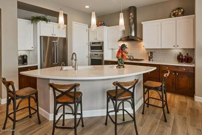 Oracle Single Family Home For Sale: 32775 S Cattle Trail