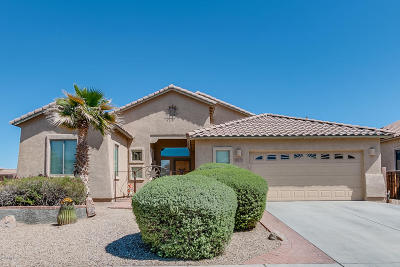 Sahuarita Single Family Home For Sale: 971 E Temporal Canyon Road