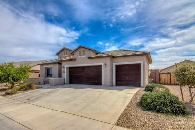 Marana Single Family Home For Sale: 12340 N Beachfield Drive