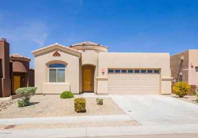 Vail Single Family Home For Sale: 10477 S Cutting Horse Drive