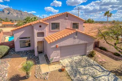 Tucson Single Family Home For Sale: 977 W Eagle Look Lane