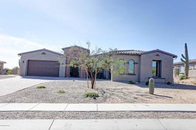 Oro Valley Single Family Home For Sale: 11753 N Luzon Court
