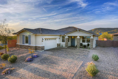 Single Family Home For Sale: 7250 W Cactus Flower Pass