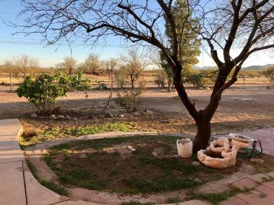 Tucson Single Family Home For Sale: 7800 S Worden Road