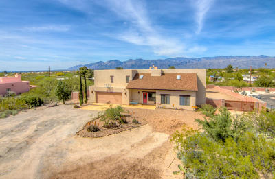Single Family Home Active Contingent: 10089 E Old Spanish Trail