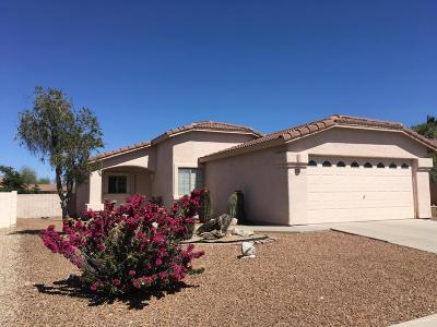 Tucson Single Family Home For Sale: 6602 W Tuzigoot Way