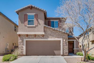 Sahuarita Single Family Home For Sale: 13812 S Camino Flauta