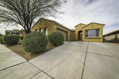 Green Valley  Single Family Home For Sale: 1866 W Acacia Bluffs Drive