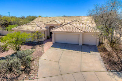 Single Family Home Active Contingent: 10720 E Silver Vein Drive