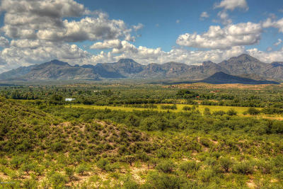 Tubac Single Family Home For Sale: 44 Chavez Siding Road