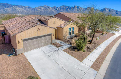 Oro Valley Single Family Home For Sale: 12978 N Via Vista Del Pasado