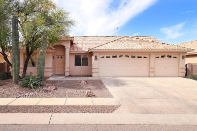 Tucson Single Family Home For Sale: 3462 S Sun Splash Drive