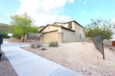 Tucson Single Family Home Active Contingent: 1333 S Woodbine Lane