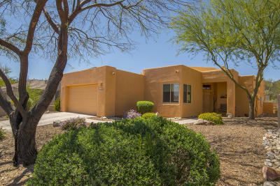 Tucson Single Family Home For Sale: 1562 S Lost Starr Drive