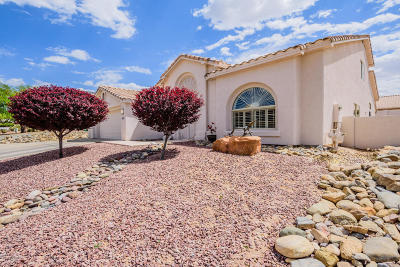 Single Family Home For Sale: 10960 E Fourwing Place