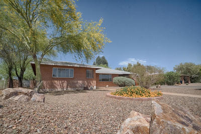 Pima County Single Family Home Active Contingent: 1244 W Schafer Drive