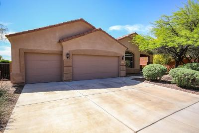 Single Family Home For Sale: 12962 N Ocotillo Point Place