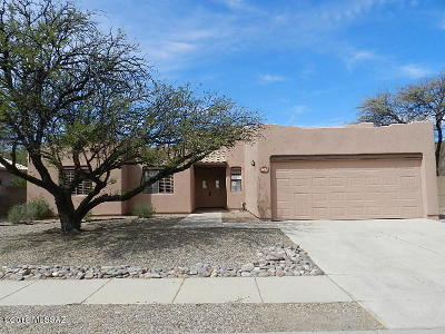 Tucson Single Family Home For Sale: 8925 N Palm Brook Drive