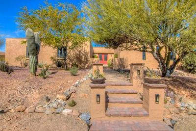 Tucson Single Family Home For Sale: 4651 N Paseo De Los Rancheros