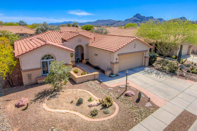 Continental Ranch Sunflower Single Family Home Active Contingent: 8007 W Cottonwood Wash Way