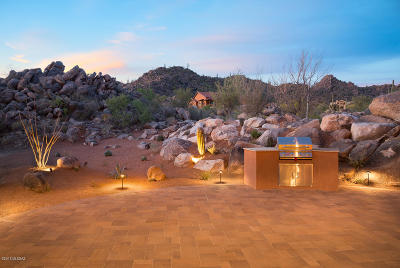 Oro Valley Single Family Home For Sale: 14307 N Mickelson Canyon Court