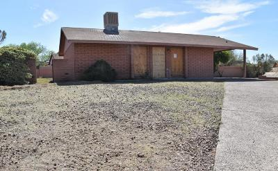 Tucson Single Family Home For Sale: 3061 W Maxine Circle