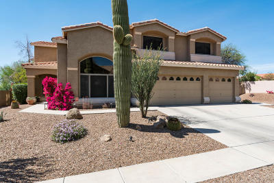 Oro Valley Single Family Home Active Contingent: 11341 N Chynna Rose Place