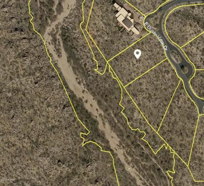 Oro Valley Residential Lots & Land For Sale: 245 E Dusty View Drive #97
