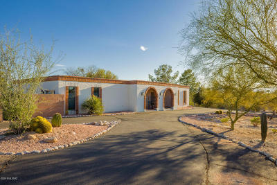 Tucson Single Family Home For Sale: 740 E Agave Place