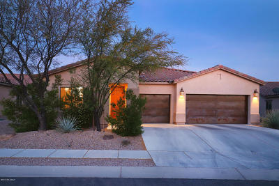 Single Family Home For Sale: 11520 N Adobe Village Place