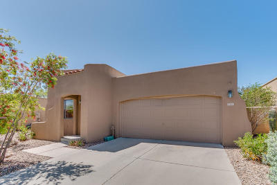 Pima County Single Family Home Active Contingent: 9163 N Ironwood Meadows Drive