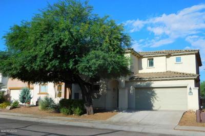 Sahuarita Single Family Home For Sale: 14848 S Camino Tierra Alegra