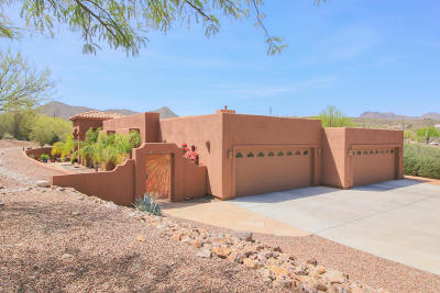 Tucson Single Family Home For Sale: 3603 W Coral Bells Court