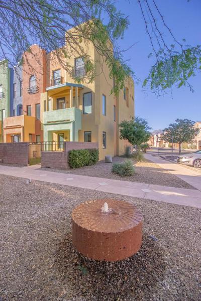 Tucson Single Family Home For Sale: 2466 E Blue Diamond Drive