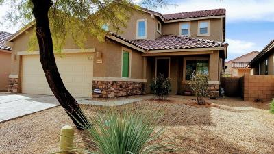 Pima County Single Family Home For Sale: 6867 W Red Snapper Way