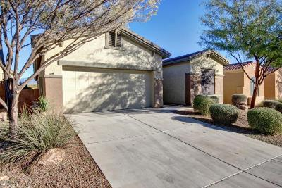 Marana Single Family Home Active Contingent: 12596 N New Reflection Drive