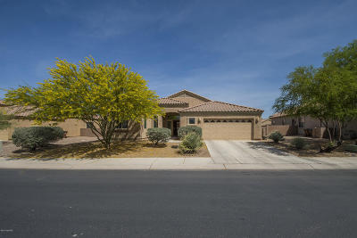 Marana Single Family Home Active Contingent: 11054 W Gallinule Drive