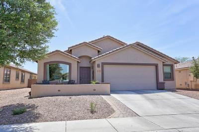 Marana Single Family Home Active Contingent: 11081 W Prairie Willow Drive