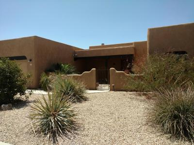 Tucson Single Family Home For Sale: 6200 S Eagles Roost Drive