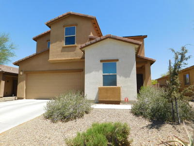 Marana Single Family Home For Sale: 12888 N Sabal Palm Way