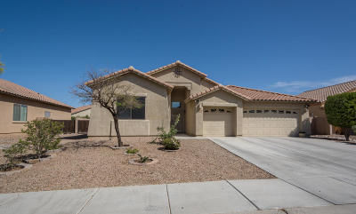 Marana Single Family Home For Sale: 11518 W Minneola Drive
