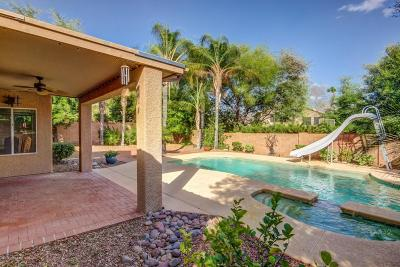 Oro Valley Single Family Home Active Contingent: 11350 N Canada Creek Drive