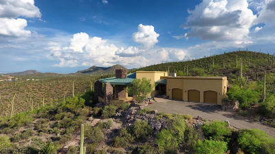 Pima County, Pinal County Single Family Home For Sale: 2500 N Highton Hills Drive