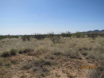 Cochise Residential Lots & Land For Sale: W Dream Catcher Way