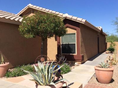 Tucson Single Family Home For Sale: 8363 N Rocky View Lane